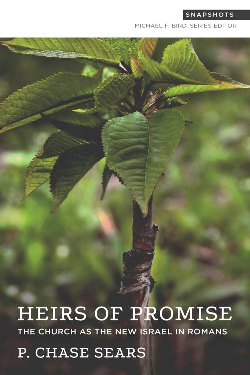 Heirs of Promise