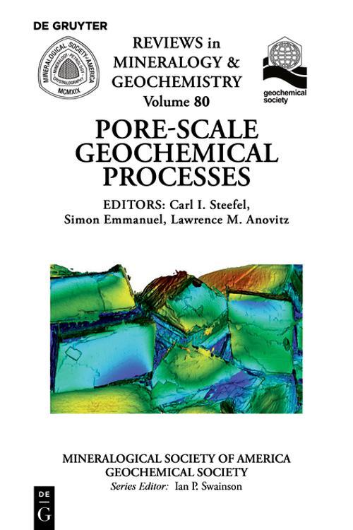 Pore Scale Geochemical Processes