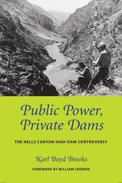 Public Power, Private Dams