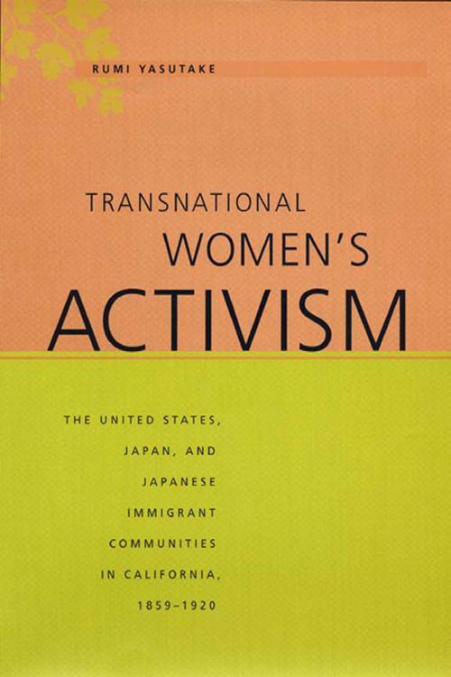Transnational Women's Activism