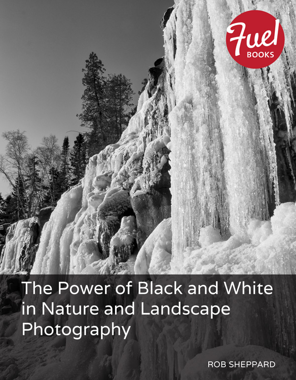 The Power of Black and White in Nature and Landscape