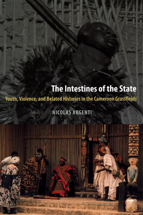 The Intestines of the State