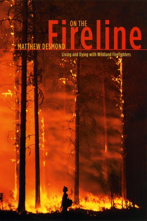 On the Fireline